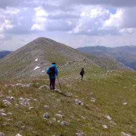 Fioriture e paesaggi a Monte Godi