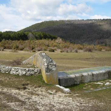 Il fontanile delle Pratarelle