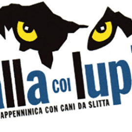 """""""Balla coi lupi"""" sull'Appennino Reggiano"""