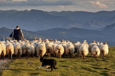 La transumanza e l'alpinismo sono Patrimonio Culturale dell'Unesco